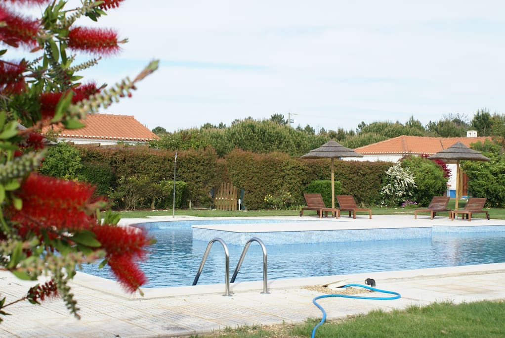 View of Swimmimg Pool from the Villa