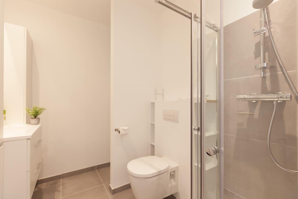 toilette + levier + douche