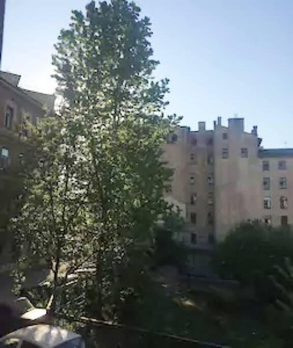 Вид из окна во двор.