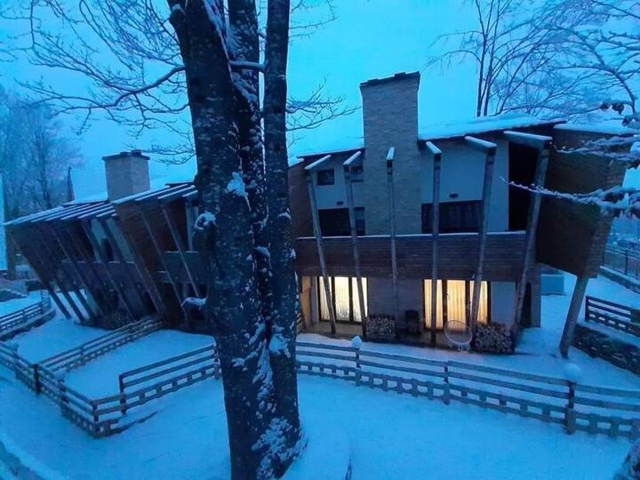 Cozy mountain apartment in Brezovica