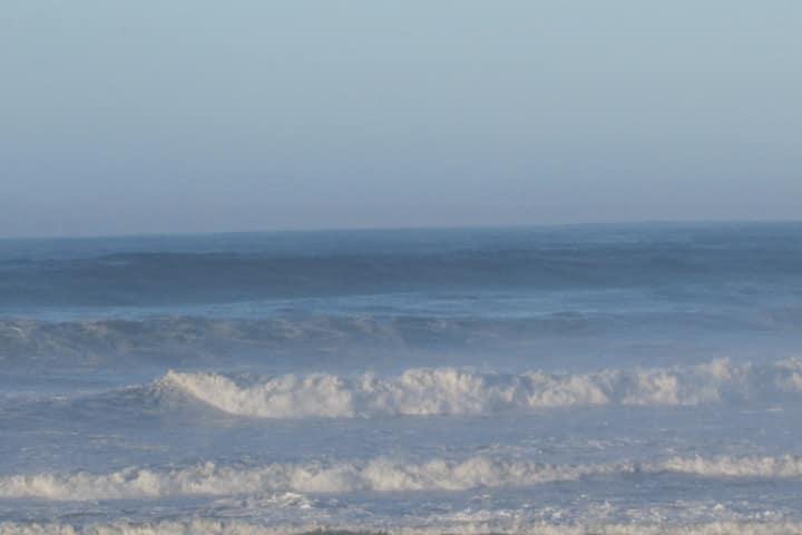 F1 avec belle vue sur mer