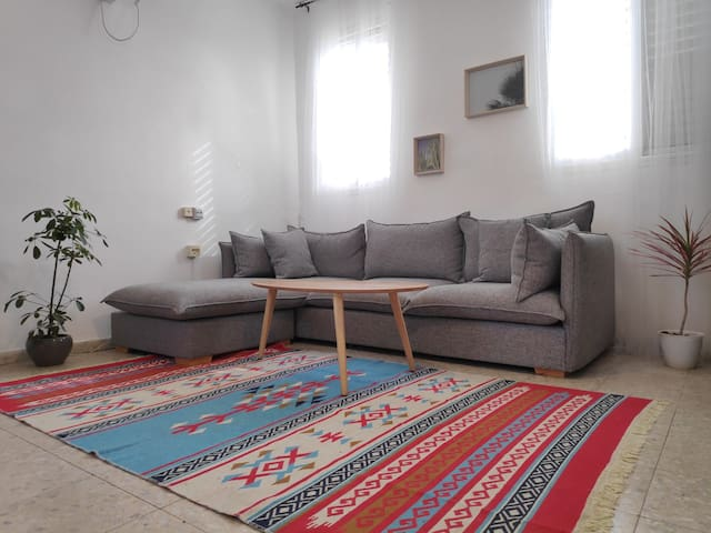 Authentic Apartment At old Jaffa (With  Roof Top)