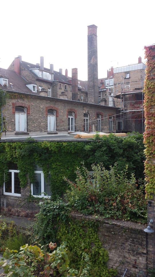 Blick vom Badezimmer OG auf die Nachbargebäude im idyllischen Innenhof.