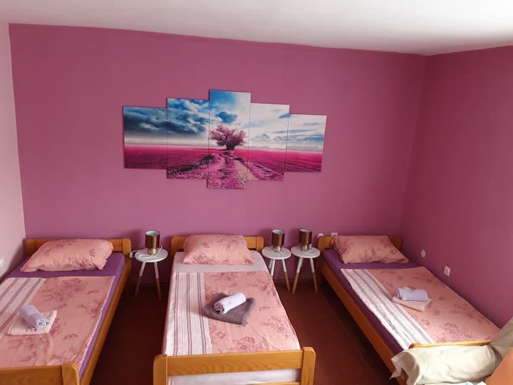 Studio apartman Centar u Ogulinu,Cvijetna ul.4