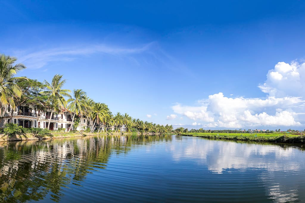 Riverside with Coconut and Rice fields