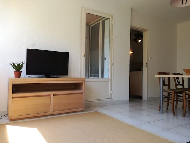 Grand appartement en centre ville