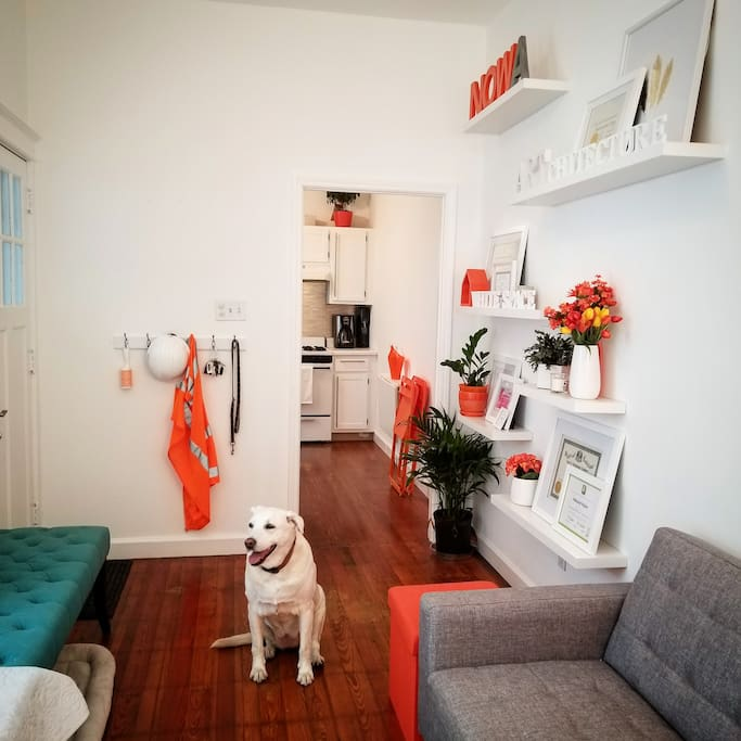 Teensy's office by day, your New Orleans pad on the weekends