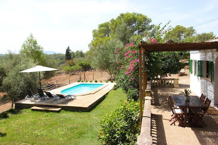 Terrassa i jardí - Terraza y jardín - Terrace and garden - Terrasse et jardin - Terraço e quintal