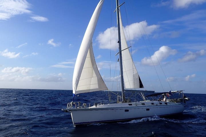 From Grenada to Carriacou in Sailboat