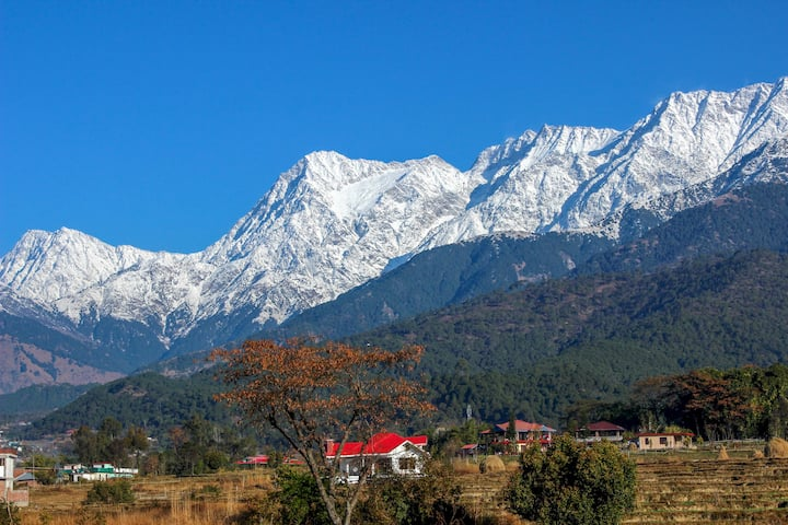 Pushpangan Ménage | Vacation Villa in Palampur
