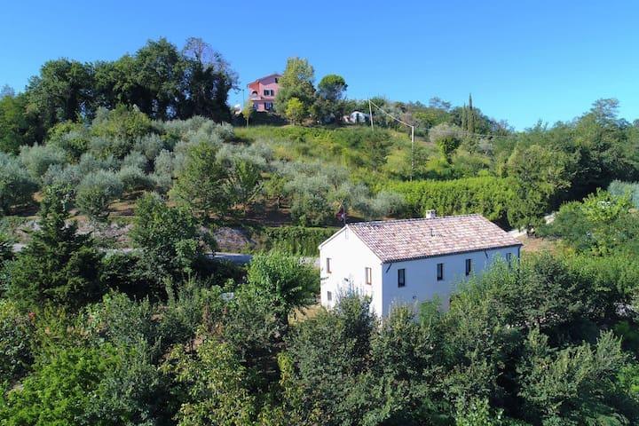 Charmante ferme avec jardin privé à Barchi Marche