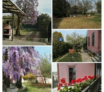 La casa di nonna Tilde vicino Milano, Pavia, Lodi