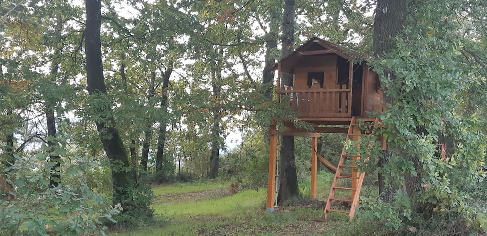 Tree house and rest area for travelers with camper
