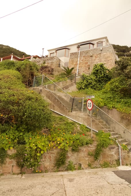 Steps up to the house
