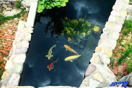 Sunny, Historic Home with Koi Ponds & Waterfalls - 比斯比(Bisbee) - 公寓