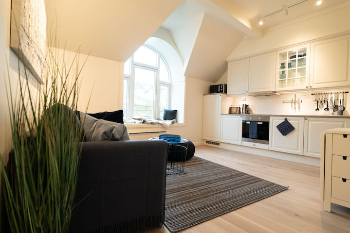 Modern Top Floor Apartment in the City Centre
