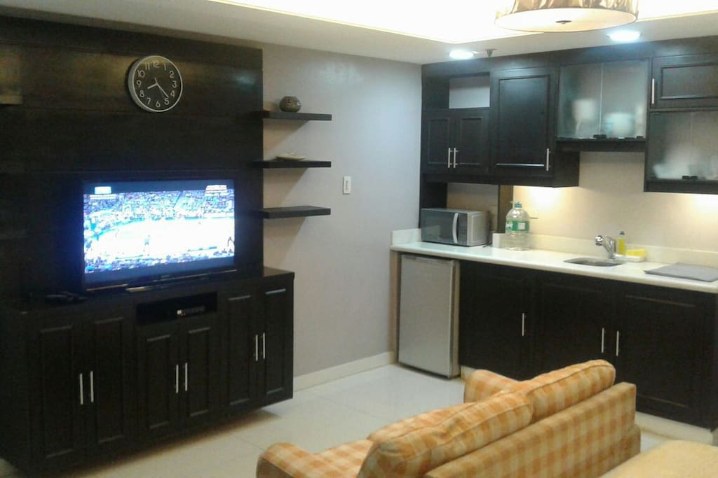 Entertainment Center and Kitchennette