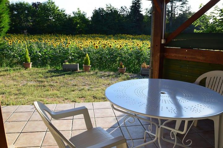 Les Gîtes de Ramouly en Périgord - La Vigne