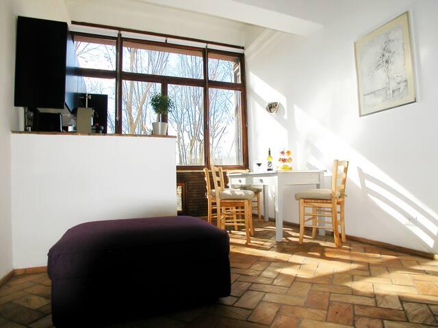 Spanish Steps luxury loft apartment