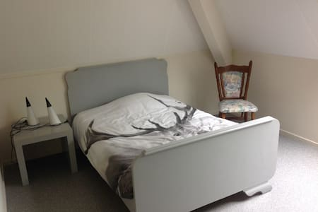 DOUBLEROOM, 1 bed, sleeps 2, met eigen douche. - Hinnaard - House