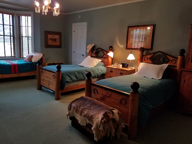 Blue Room at Champlin Mansion - Enid - Maison