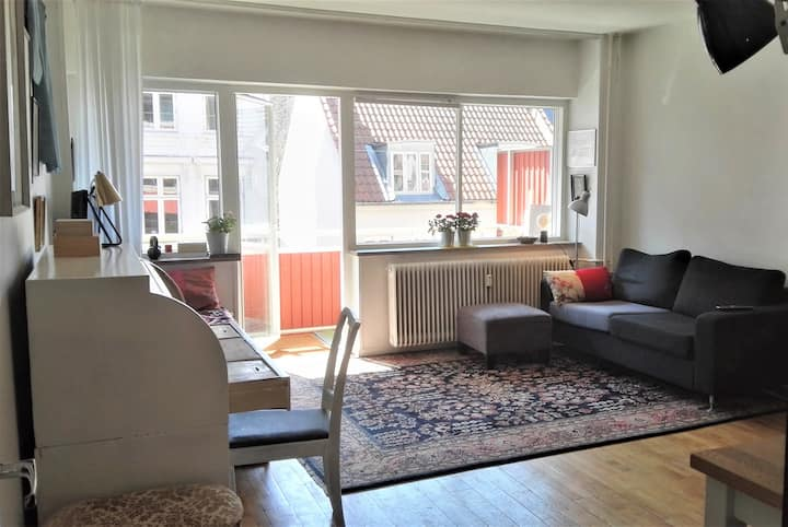 Spacious, bright  studio appartment (52m2) Cph.