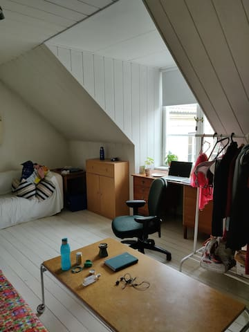 Cozy room in centrally located house