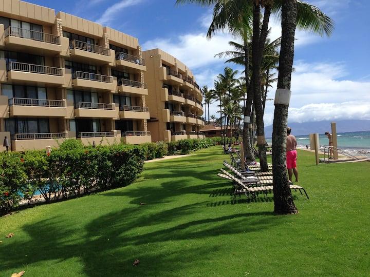 Aloha turtles at oceanfront Resort