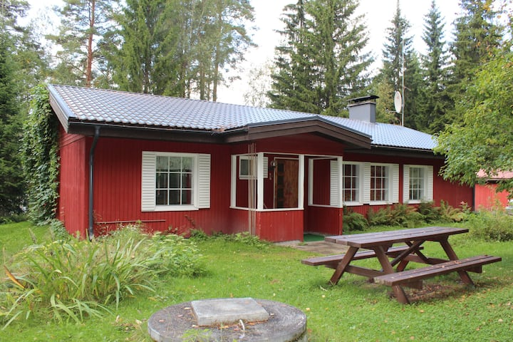 Villa Red House cozy cottage by the lake Simpele