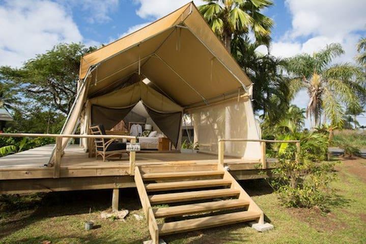 Ikurangi Eco Retreat- Glamping Rarotonga