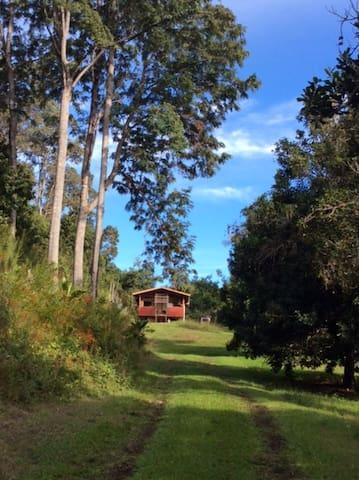 Private Solar Cabin on Organic Farm - Serenity!