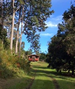 Private Solar Cabin on Organic Farm - Serenity! - キャプテンクック