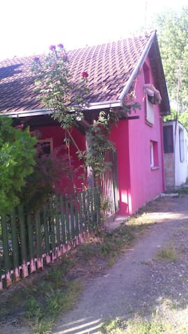 Petrovaradinska Ada - Petrovaradin - House