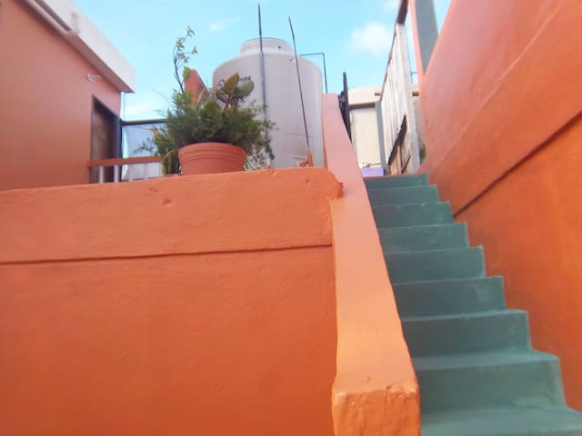 casa zina terraza