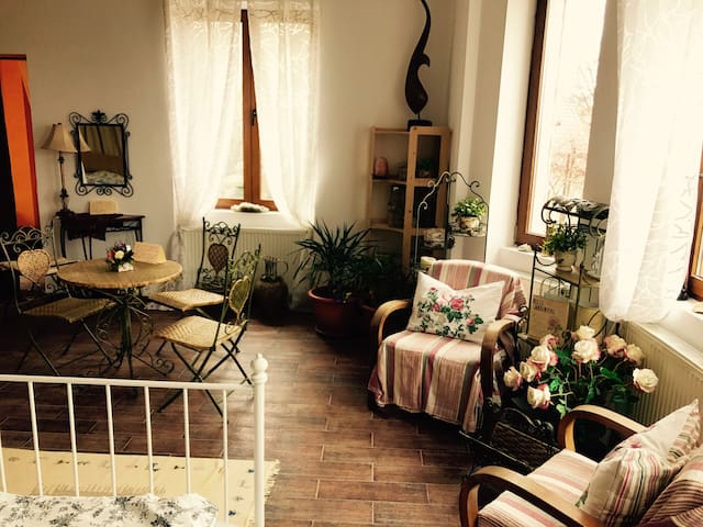 Charming apartment in a German home - Brasov - Rumah