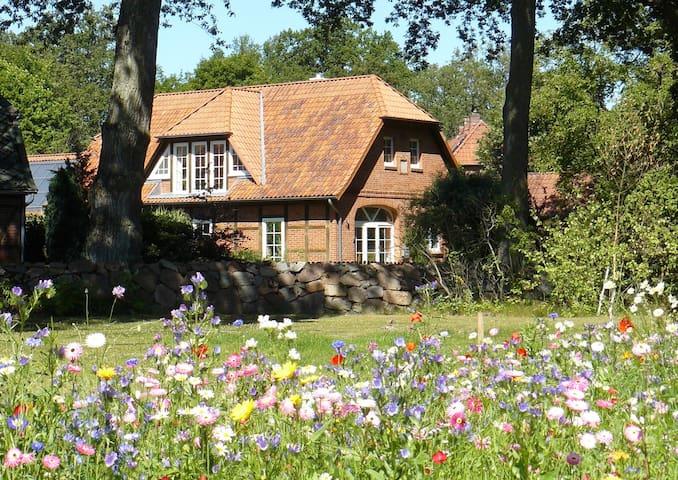 Sonnige Dachgeschosswohnung (65qm) - Altenmedingen - Wohnung