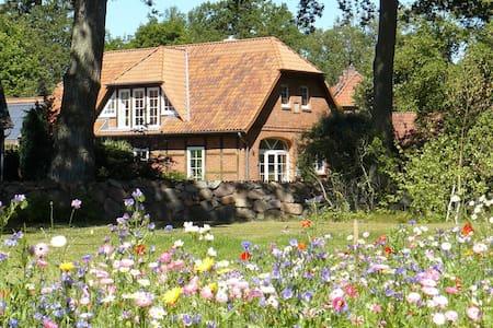 Sonnige Dachgeschosswohnung (65qm) - Altenmedingen - Lägenhet