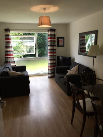 Light, quiet and airy flat - Berkhamsted