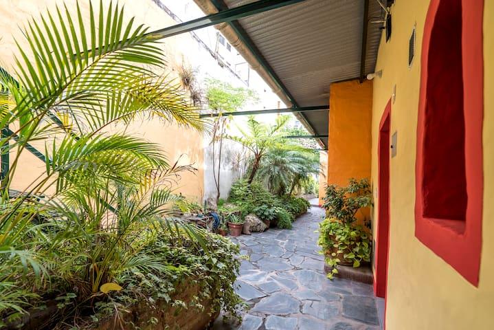 patio trasero, cuenta con una espectacular vista, lleno de plantas. cuenta con bancos donde puedes sentarte a leer un libro, fumar,  o solo descansar y apreciar el patio