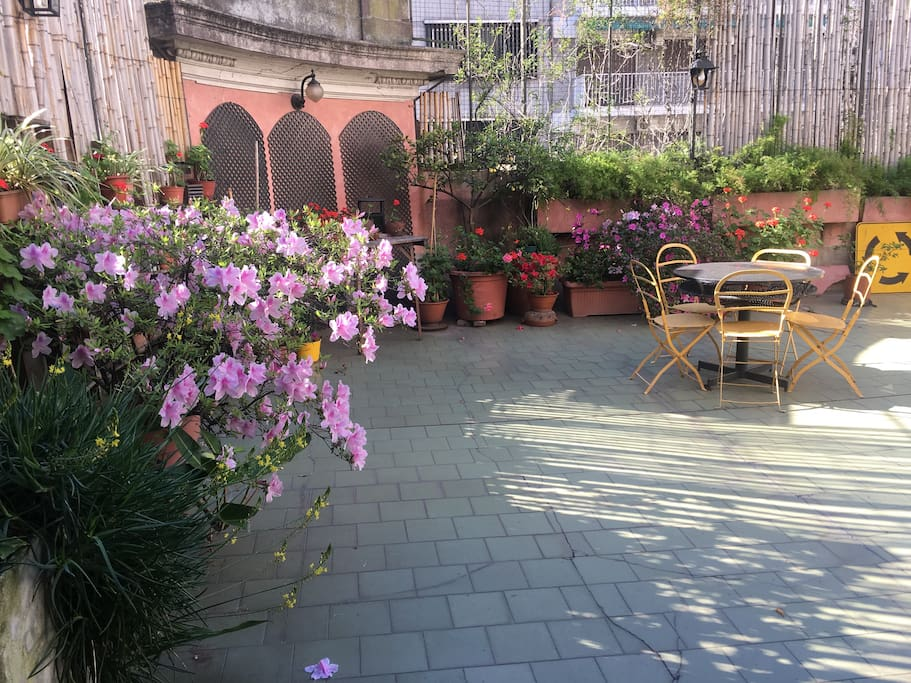 sunny and huge terrace where to have breakfast or relax after a long journey visiting the city. Available for practicing yoga, studying or homeworking.