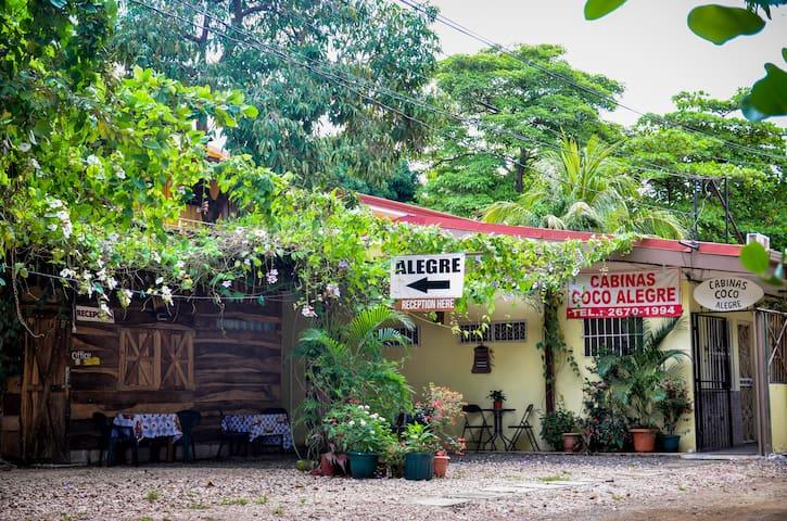 Hostel Coco Alegre B