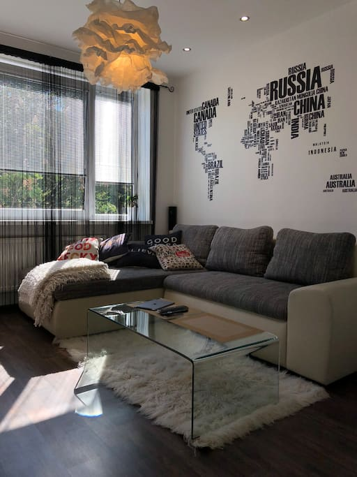 Pull out sofa for guests