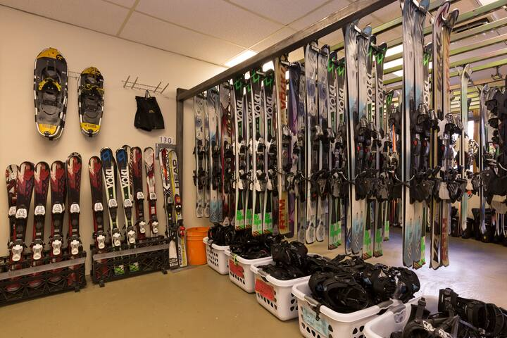Our shop's ski selection, rent here and use our FREE ski shuttle