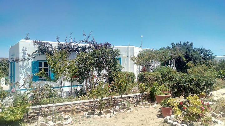 Traditional peaceful studios with garden in Sifnos