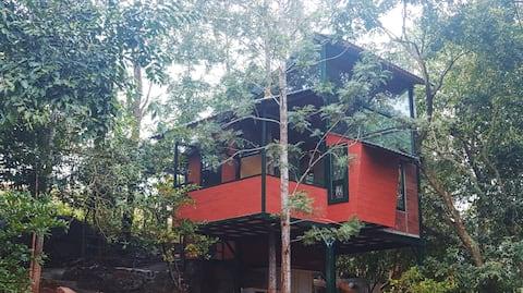 Yelagiri樹屋