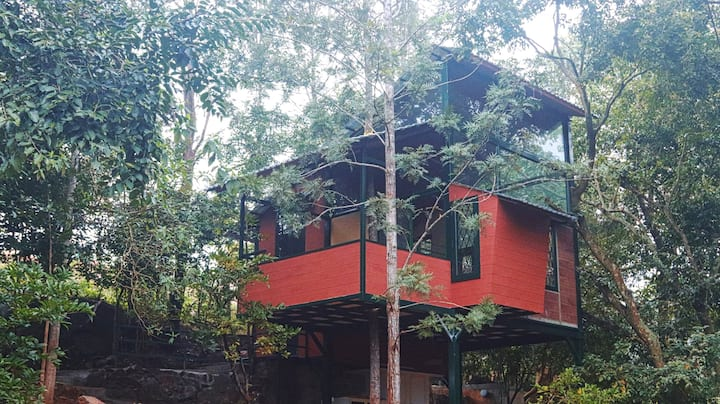 Yelagiri Tree house