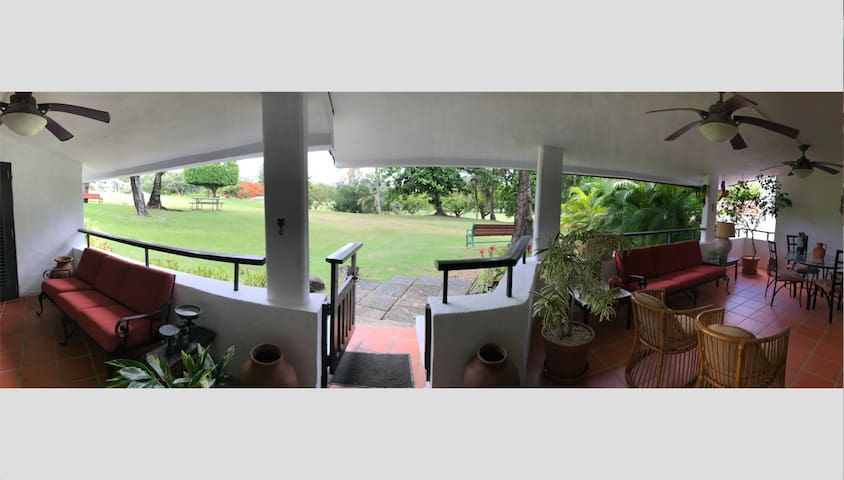 Patio wide view