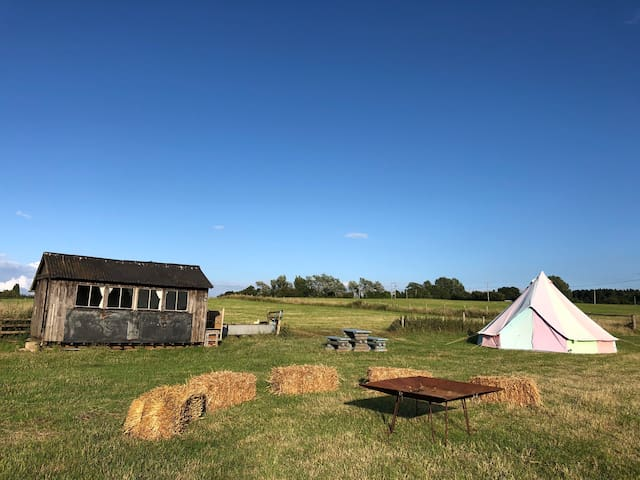 Bell Tent or Hut- Private camping - Amazing views