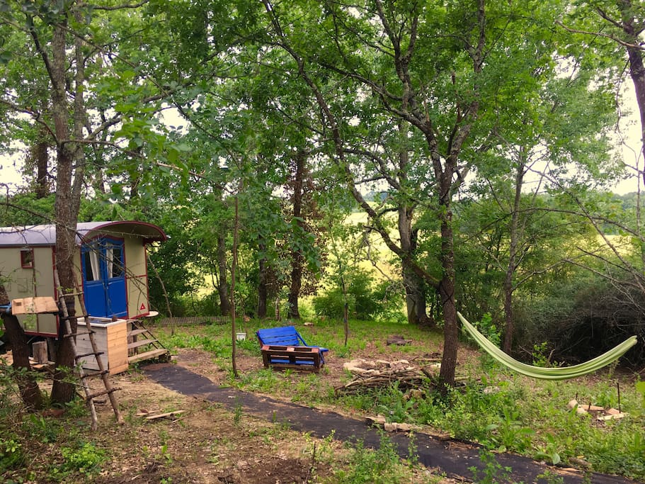 The land the caravan the tree platform the fire pit the view..