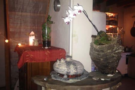 Hamac dans le salon avec cheminée - Aix-en-Provence - Luontohotelli